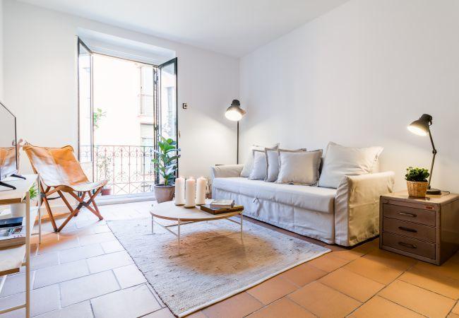 Apartamento en Madrid - La Latina IV