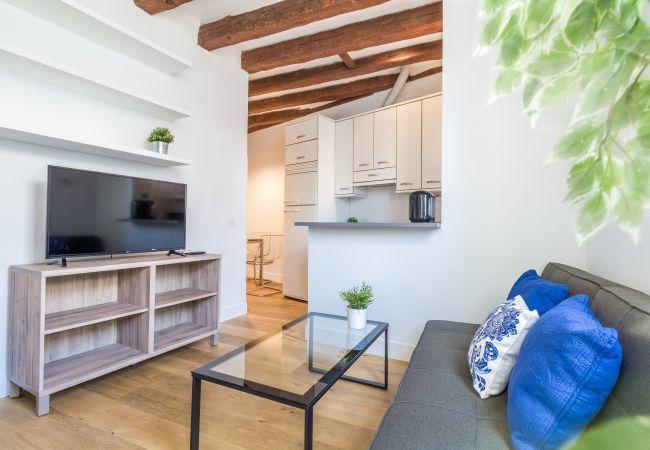 Apartamento en Madrid - Puerta  de Alcalá II